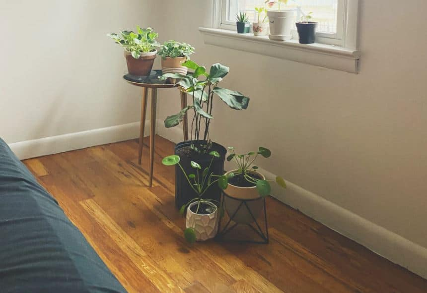 parquet en bois dans chambre